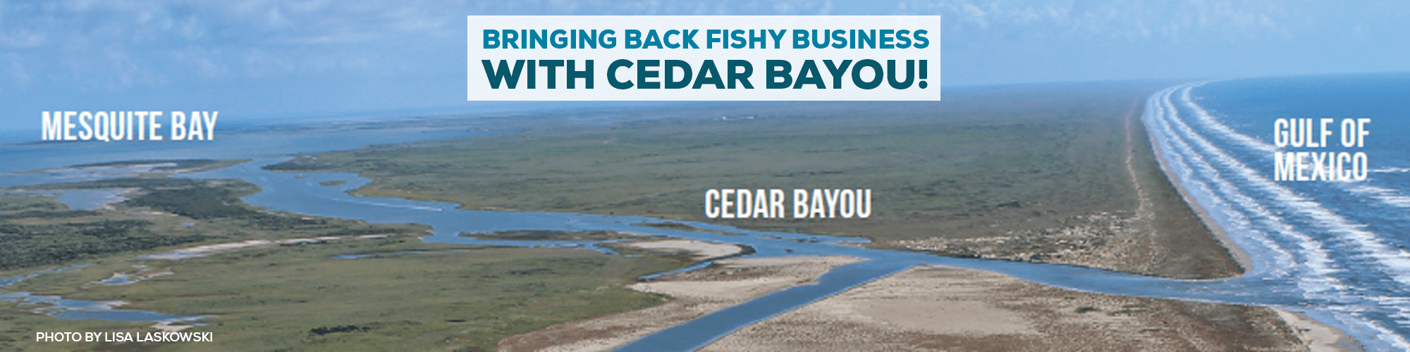 Bringing Back Fishy Business With Cedar Bayou!